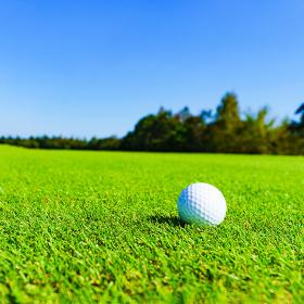 ゴルフ ボール golf