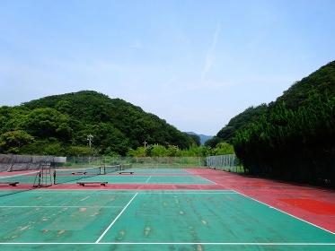 劣化したテニスコートのアンツーカー
