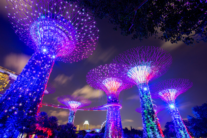 SINGAPORE - AUGUST 26, 2017: Supertrees at Gardens by the Bay. T