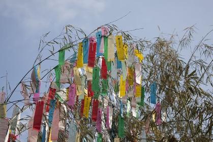 機物神社七夕祭り