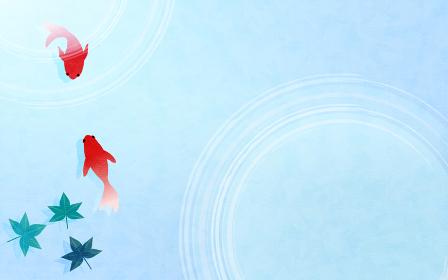 金魚と楓の葉の夏素材、水紋と青海波の淡い背景素材