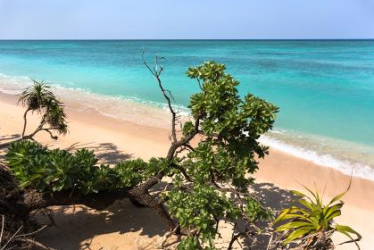ニシ浜・日本最南端、沖縄県波照間島の海