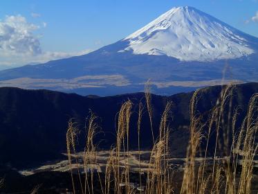 箱根仙石原からの冬富士
