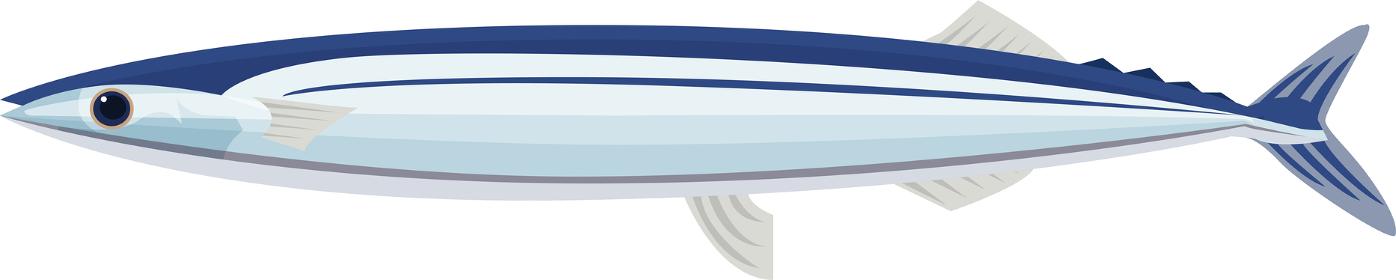 イラスト素材 さんま サンマ 秋刀魚 魚 食材 アイコン ベクター