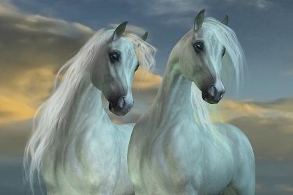 駿馬」の画像、写真素材、ベクター画像|イメージマート