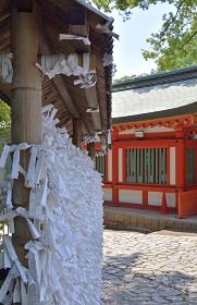 氷川神社・おみくじ