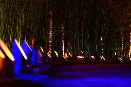 合馬竹灯籠祭り