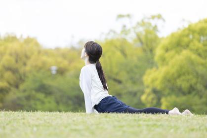 緑豊かな公園でヨガのポーズをとる若い女性