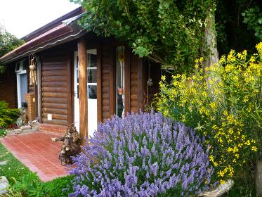 庭にラベンダーなどの花が咲くログハウス