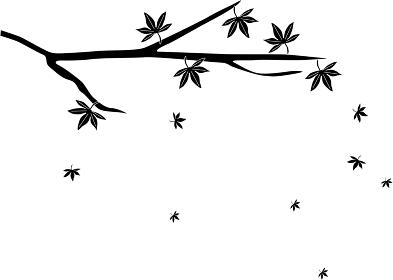 紅葉の葉が散るシルエット