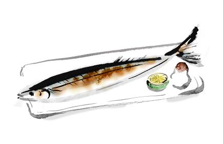 手描きの秋の魚のサンマの塩焼きのイラスト 筆書きの和風イラスト