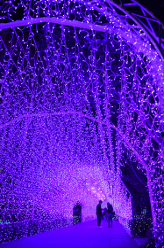 江ノ島ライトアップ