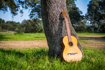 Classical Spanish Guitar Outside. Music And Nature