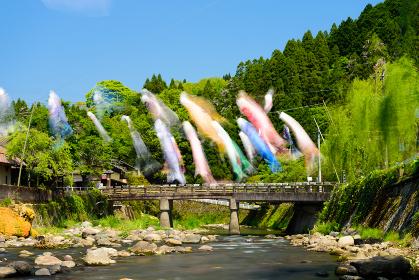 大分長湯温泉春の鯉のぼり