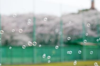 野球場とシャボン玉