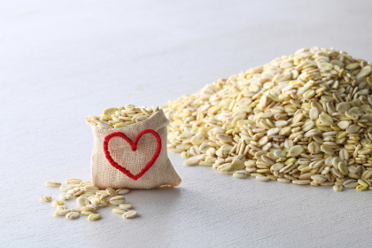 食糧危機と人道的支援