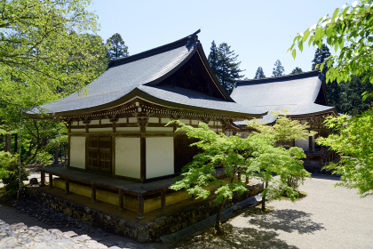 新緑の神護寺 五大堂と毘沙門堂 京都市高雄