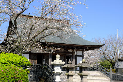 知覧平和会館の春