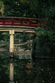 晩秋の神社の風景 12月