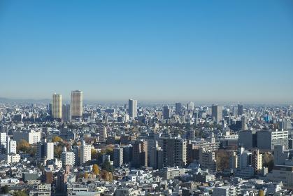 【東京都】文京区シビックセンターより鳥瞰【2020冬】