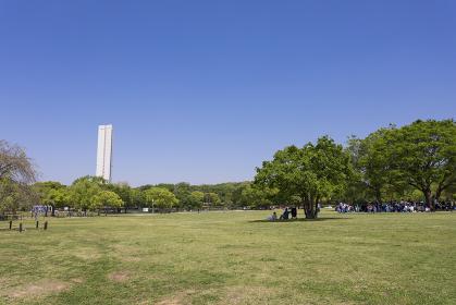 大仙公園大芝生広場と平和塔