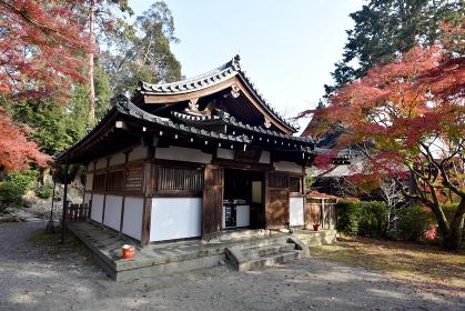 秋の三井寺 霊鐘堂 滋賀県大津市