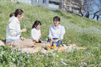 屋外でピクニックを楽しむ人たち