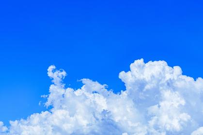 入道雲 積乱雲 夏【夕立が来る直前の空模様】