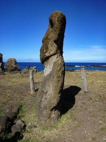 チリ・イースター島にて上半身胴体まで彫刻されたモアイ像の横向き写真