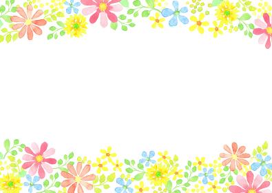 水彩で描いた草花のフレーム