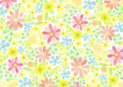 水彩で描いた草花の模様