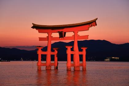 日没後の宮島 厳島神社の大鳥居ライトアップ