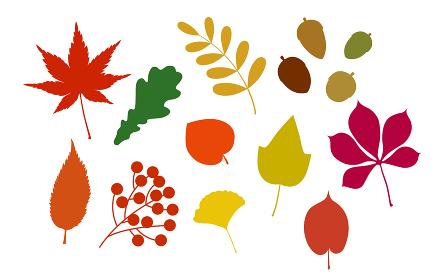 秋の紅葉アイコンセット