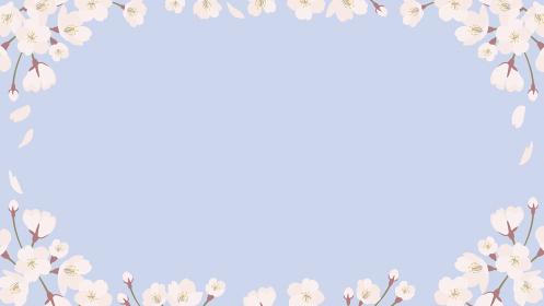 background_sakura 5_5