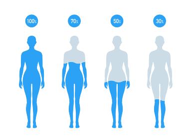 人体の水分割合の図 女性
