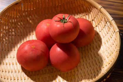 トマト 夏野菜
