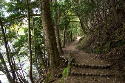 日光湯元のハイキングコース