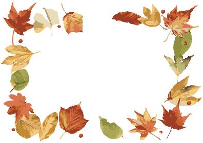 秋の葉っはのフレーム