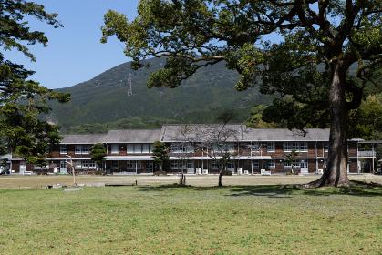 秋月城跡の桜と大楠の風景と秋月中学校 福岡県朝倉市