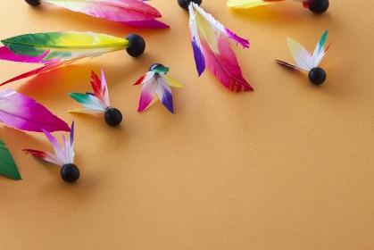 羽子板の羽根