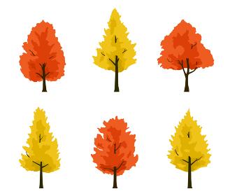 楓とイチョウ 紅葉の木イラストセット
