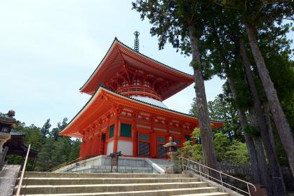 高野山壇上伽藍 根本大塔 和歌山県高野町