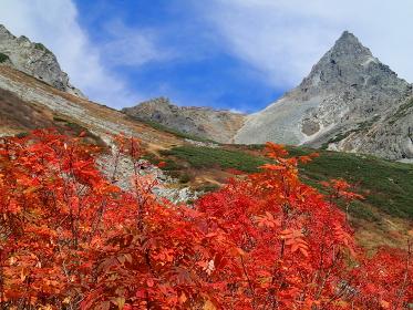 秋の空と槍沢の紅葉