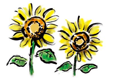 手描きイラスト素材 植物 ひまわり 向日葵 ヒマワリ