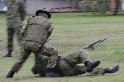 陸自隊員の格闘訓練演技(2010年陸自桂駐屯地イベント)