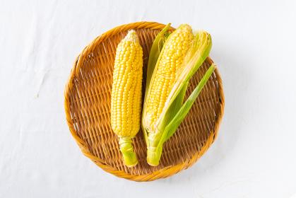 新線夏野菜 トウモロコシ