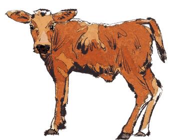 丑 牛 うし ウシ 茶色種 子牛 干支 十二支