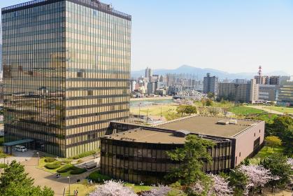 小倉城桜まつり 小倉城から眺める市庁舎