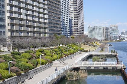 江東区の高層ビル群