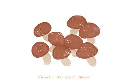 秋の味覚、キノコのシンプルなイラスト ナメコ